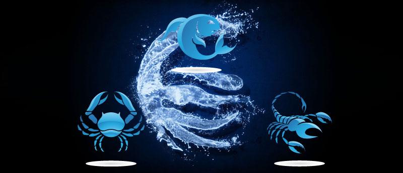 Достоинства и особенности стиля знаков зодиака